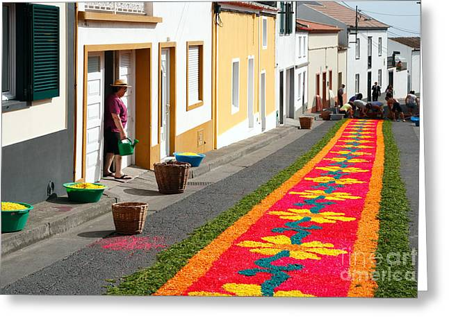Making Flower Carpets Greeting Card by Gaspar Avila
