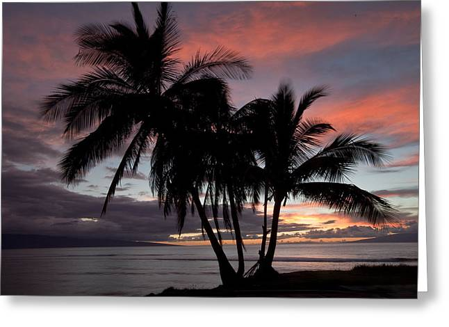 Mala Sunset Greeting Card by James Roemmling