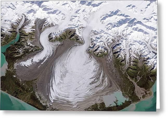 Malaspina Glacier Greeting Card by Nasa
