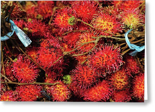 Malaysia, Borneo, Semporna, Red Greeting Card by Anthony Asael