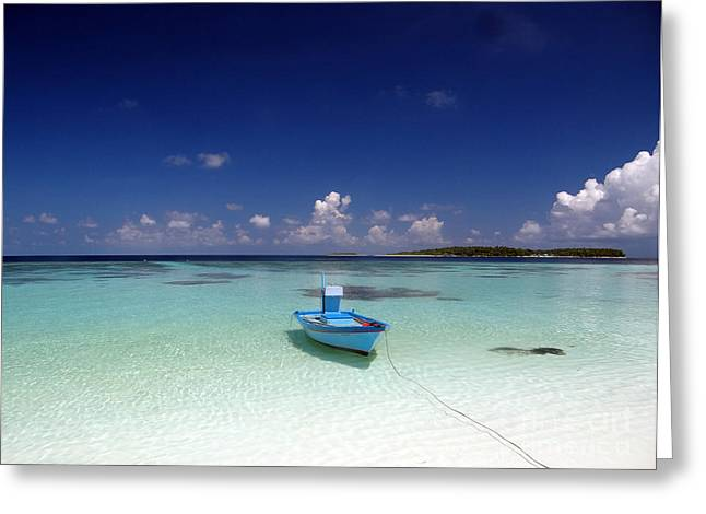 Maldives 09 Greeting Card by Giorgio Darrigo