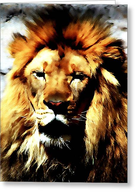 Greeting Card featuring the painting Male African Lion 2 by Jennifer Muller