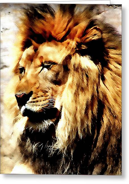 Greeting Card featuring the painting Male African Lion by Jennifer Muller