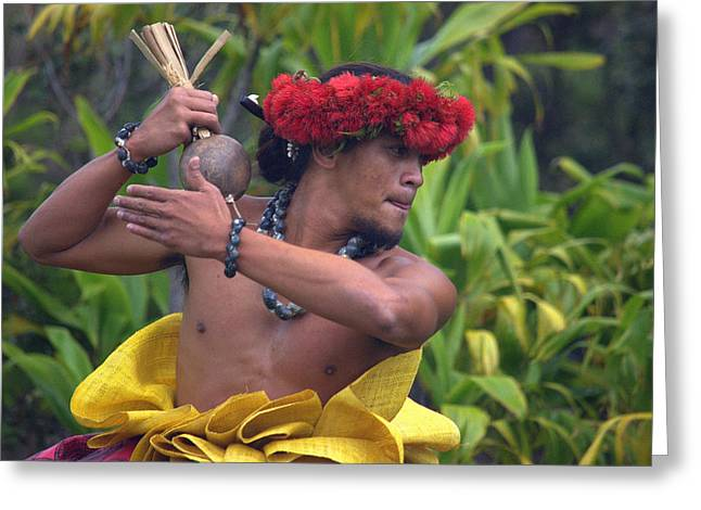 Male Hula Dancer With Small Gourd Instrument Greeting Card