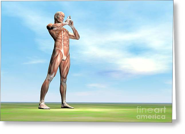 Male Musculature Standing On The Green Greeting Card by Elena Duvernay