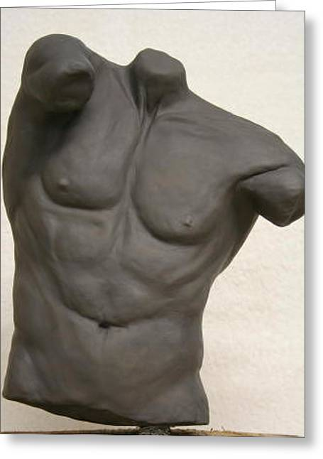 Male Torso Greeting Card by Monika Degan