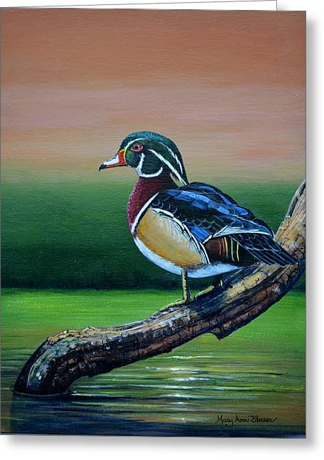 Male Wood Duck Greeting Card by Mary ann Blosser
