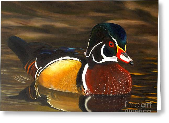 Male Wood Duck Portrait Greeting Card by Jane Axman