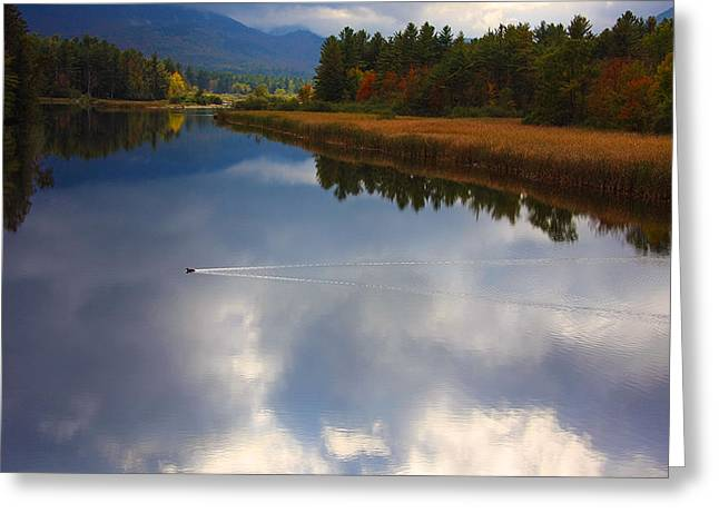 Greeting Card featuring the photograph Mallard Duck On Lake In Adirondack Mountains In Autumn by Jerry Cowart