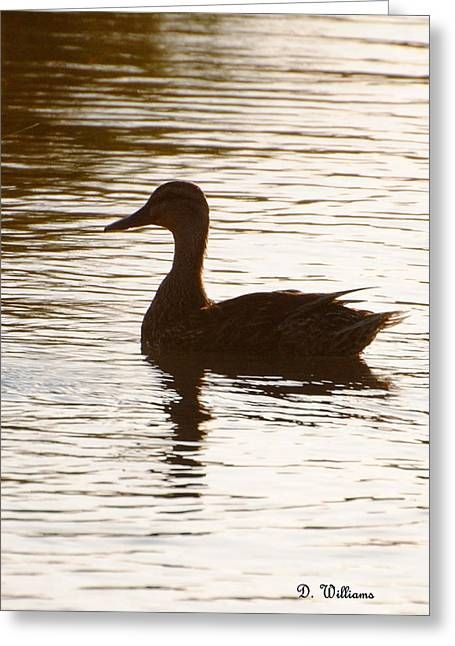 Mallard Silhouette Greeting Card