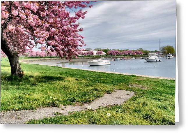 Mamaroneck Harbor Greeting Card