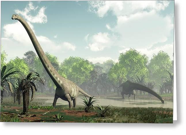Mamenchisaurus Dinosaurs Greeting Card