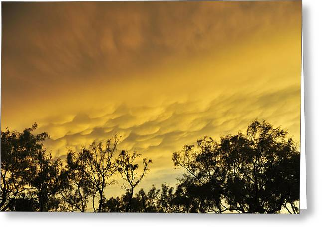 Mammatus Clouds At Sunset Greeting Card by Karen Slagle