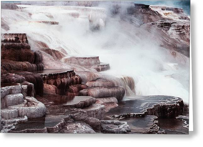 Mammoth Hot Springs In Yellowstone Greeting Card