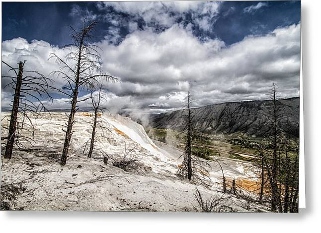 Mammoth Hot Springs Greeting Card