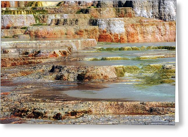 Mammoth Hot Springs Terraces Greeting Card