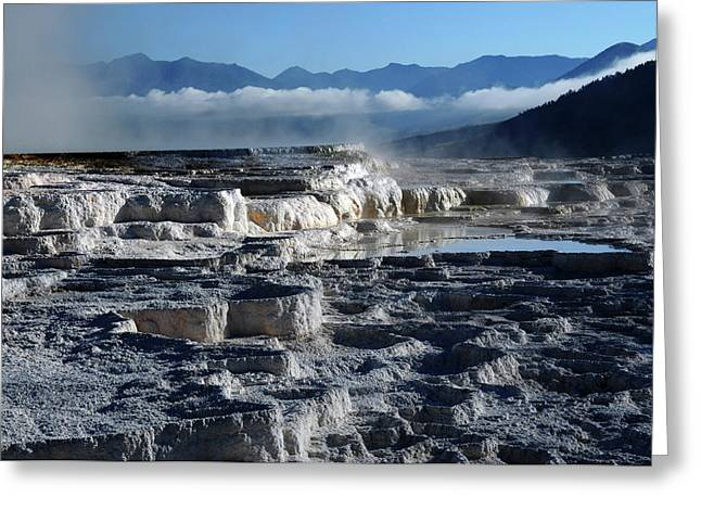 Mammoth Hot Springs, Yellowstone Greeting Card