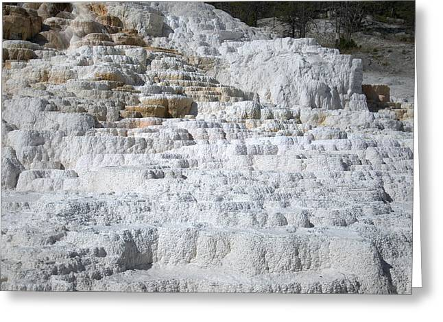 Mammoth Hotsprings 3 Greeting Card