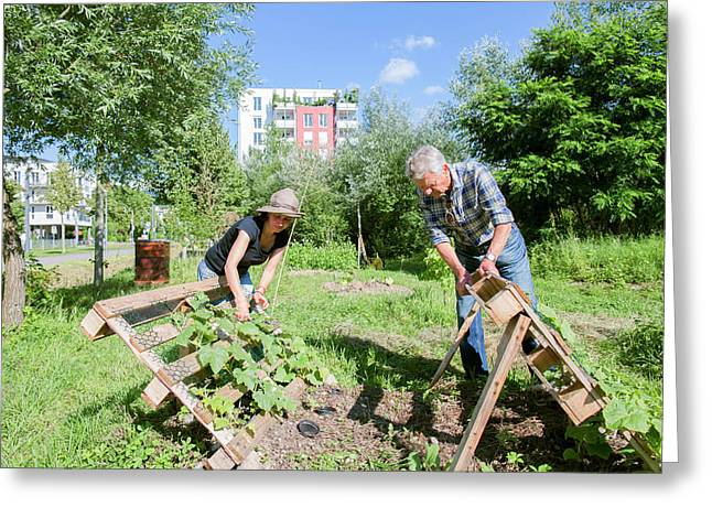 Man And Woman Gardening Greeting Card