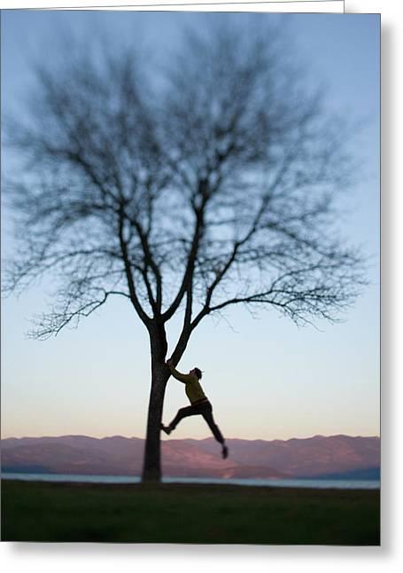 Man Climbing Lone Tree Greeting Card