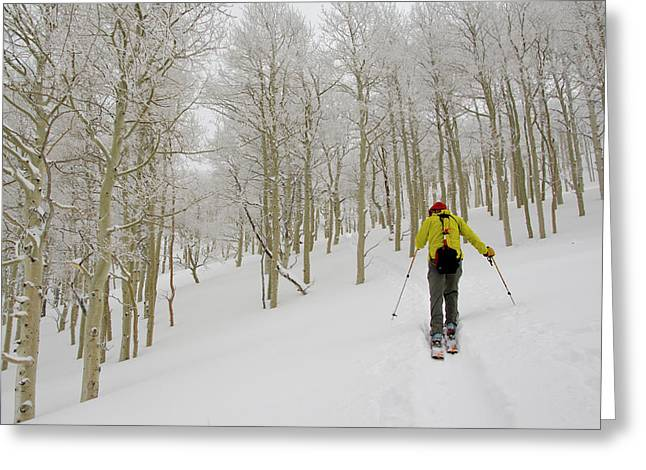 Man Climbing Through Rimed Aspen Trees Greeting Card by Howie Garber