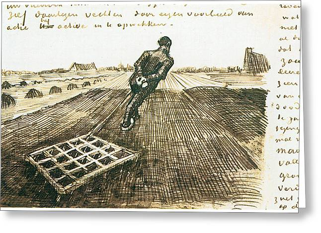 Man Pulling A Harrow Greeting Card by Vincent van Gogh