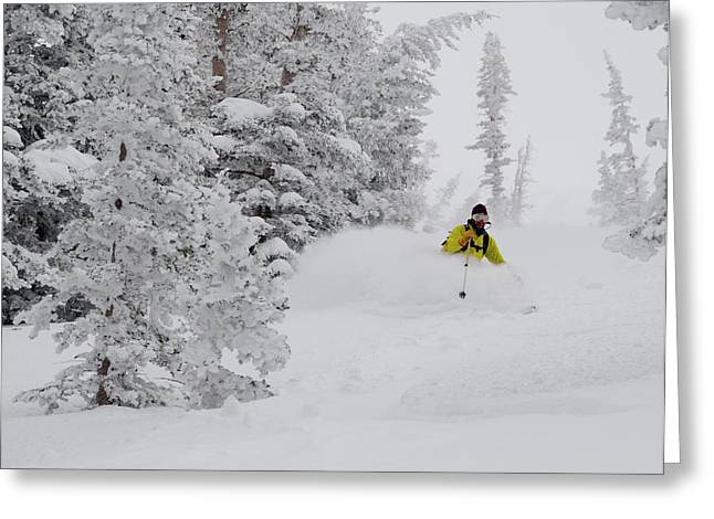 Man Skiing Through Rimed Aspen Greeting Card