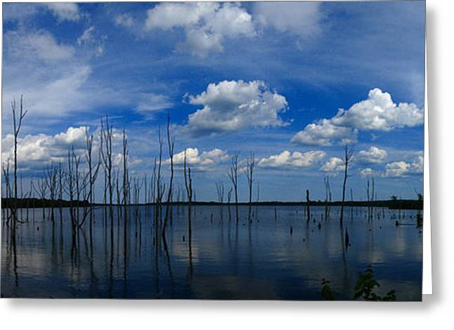 Greeting Card featuring the photograph Manasquan Reservoir Panorama by Raymond Salani III