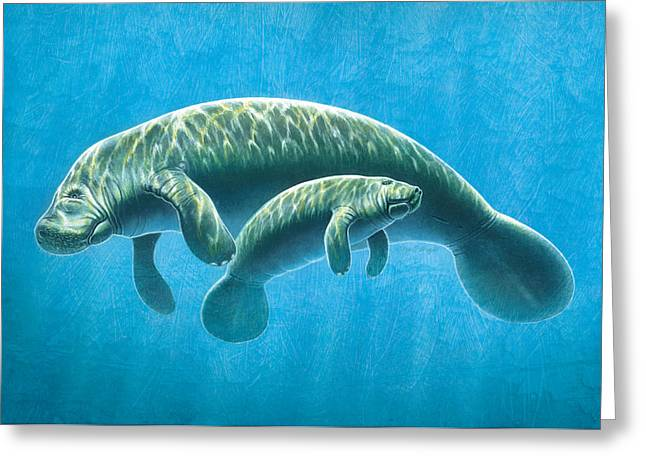 Manatee Greeting Card by JQ Licensing