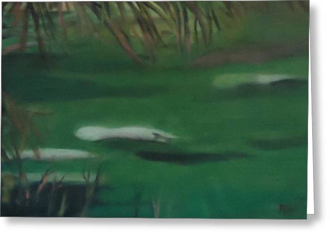 Manatee's Winter Home Greeting Card by Betty Pimm