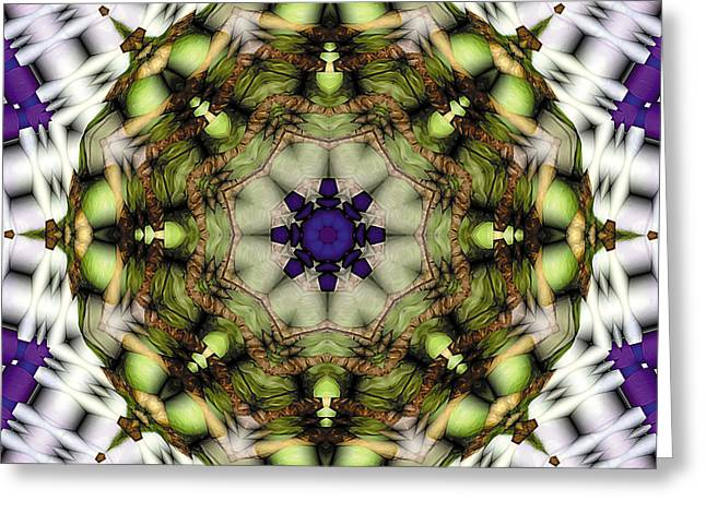 Mandala 21 Greeting Card by Terry Reynoldson
