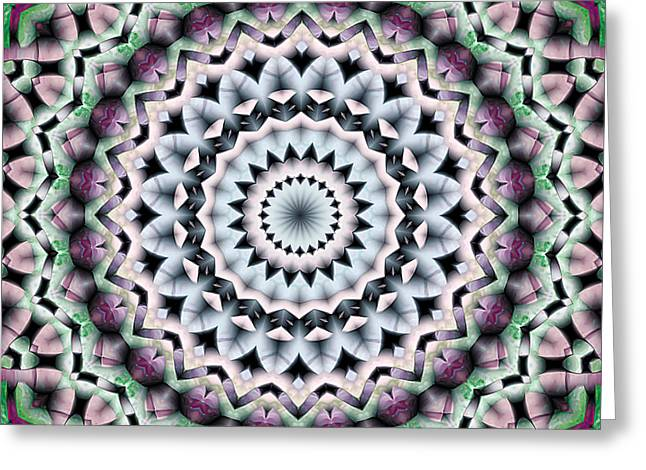 Mandala 40 Greeting Card by Terry Reynoldson