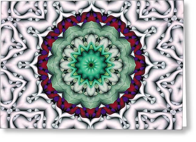 Mandala 8 Greeting Card by Terry Reynoldson