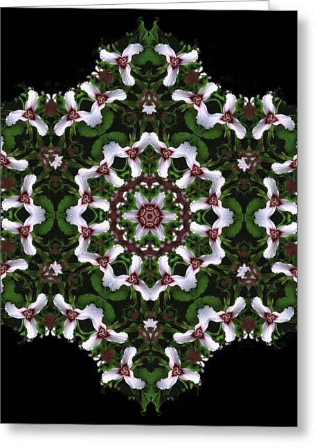 Mandala Trillium Holiday Greeting Card