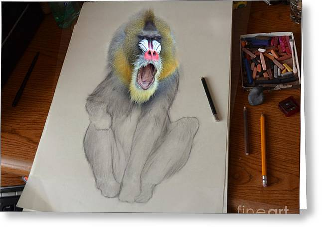 Mandrill Drawing Coming Alive Greeting Card by Jim Fitzpatrick