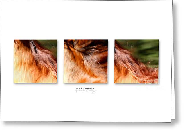 Mane Dance Triptych Greeting Card