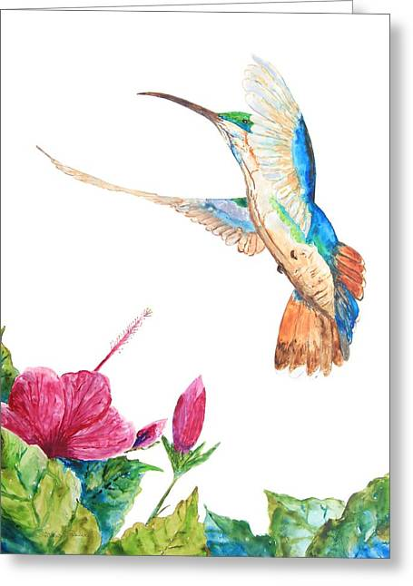 Mango Hummingbird Greeting Card