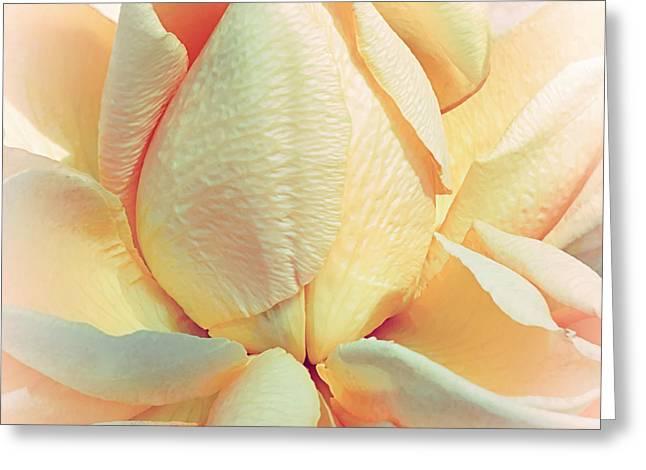 Mango Smoothie Greeting Card by Darlene Kwiatkowski