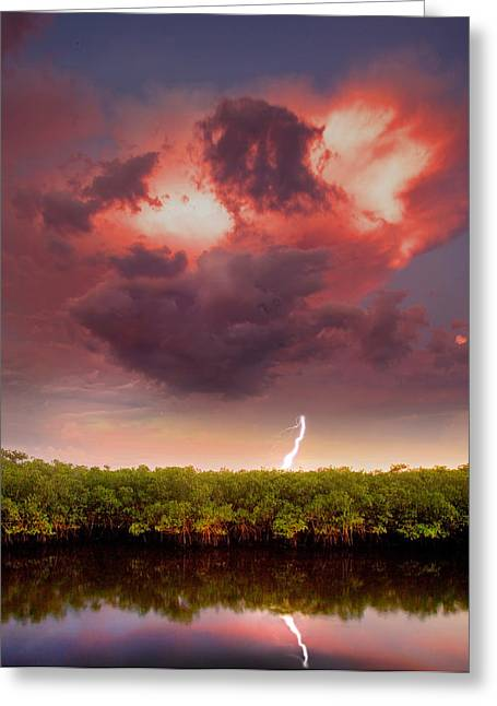 Mangrove Storm Greeting Card
