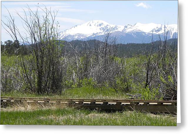 Greeting Card featuring the photograph Lake Manitou Sp Woodland Park Co by Margarethe Binkley