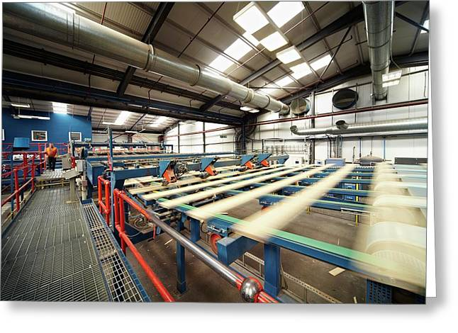 Manufacturing Of Timber Decking Planks Greeting Card by Mark Sykes