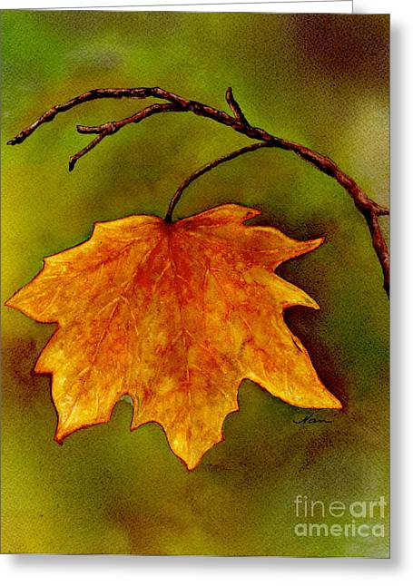 Maple Leaf In It's Yellow Splendor Greeting Card