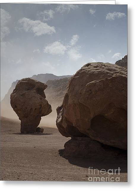 Marble Canyon No. 2 Greeting Card by Dave Gordon