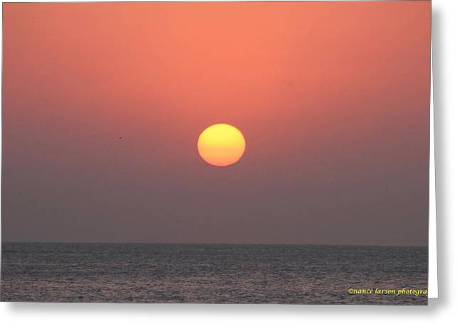 March Sunrise Greeting Card by Nance Larson
