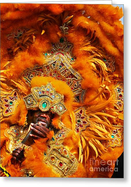 Mardi Gras Indian Orange Greeting Card