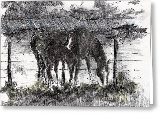 Greeting Card featuring the mixed media Mare And Foal by Tim Oliver