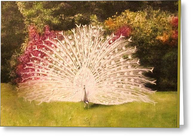 Maria's White Peacock Greeting Card