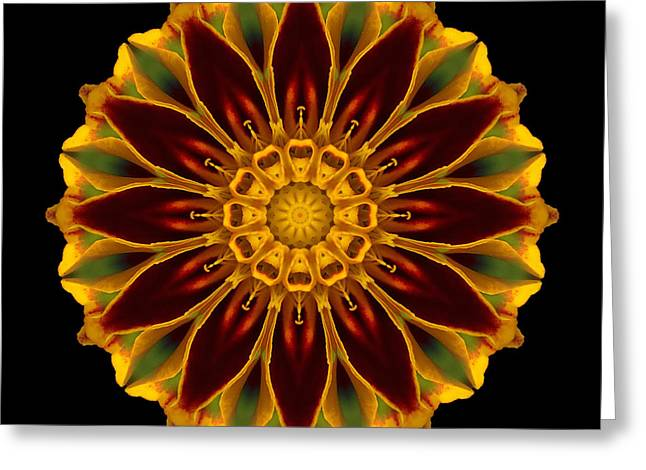 Greeting Card featuring the photograph Marigold Flower Mandala by David J Bookbinder