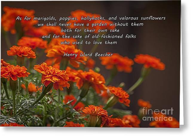 Marigold Gardens Greeting Card
