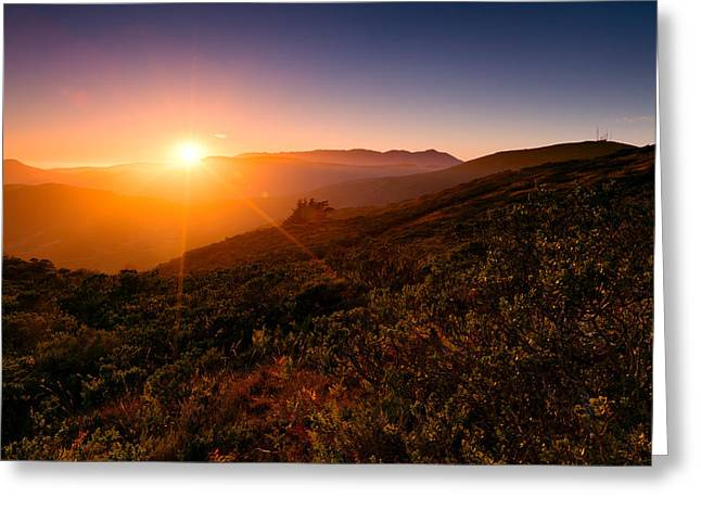 Marin County Sunset Greeting Card by Alexis Birkill